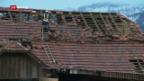 Video «FOKUS: Burglind – Ein Sturm fegt übers Land» abspielen