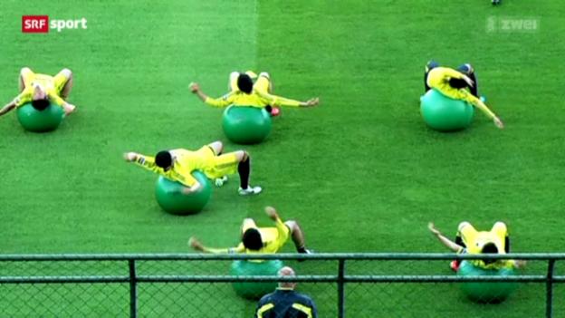 Video «Confed Cup: Vorschau Brasilien - Japan» abspielen
