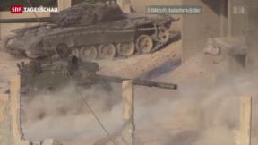 Video «Auf der Suche nach einem Ausweg aus der Syrien-Krise» abspielen