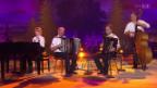 Video «Akkordeonduo Martin Suter junior und senior» abspielen