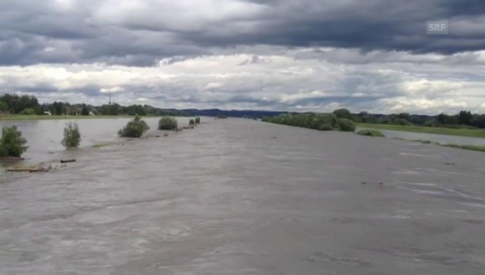 Der Rhein führt Hochwasser