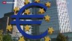 Video «EZB prüft Banken aus der Euro-Zone» abspielen