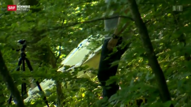 Video «Flugzeugabsturz nach Kollision» abspielen