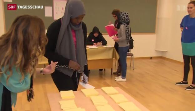 Video «Schwedendemokraten im Wahlkampf» abspielen