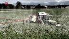 Video «Aktionsplan zu Pflanzenschutzmitteln kommt» abspielen