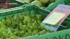 Video «Schwerer Stand für Agrarinitiativen» abspielen