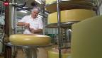 Video «FOKUS: Käse weniger wert» abspielen