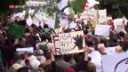 Video «Neue Massenproteste in Algerien erhöhen Druck auf Bouteflika» abspielen
