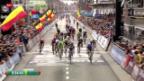 Video «Rad: Degenkolb gewinnt Gent - Wevelgem» abspielen