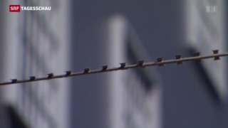 Video «Schlag gegen ´Ndrangheta-Mafia» abspielen