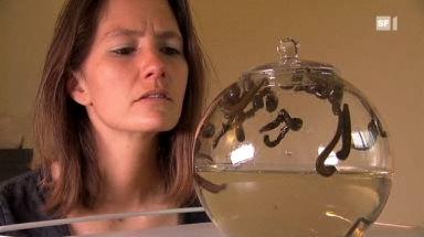 Video «Vom Blutegel gebissen - Das Versuchskaninchen testet die Hirudotherapie» abspielen