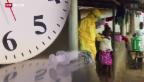 Video «Ebola-Medizin: Wettlauf gegen die Zeit» abspielen