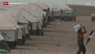 Video «Weltflüchtlingstag: 50 Millionen auf der Flucht » abspielen