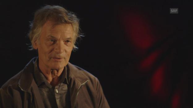 Video «Kulturhistoriker Hans Peter Treichler über Escher und das Gotthard-Projekt» abspielen