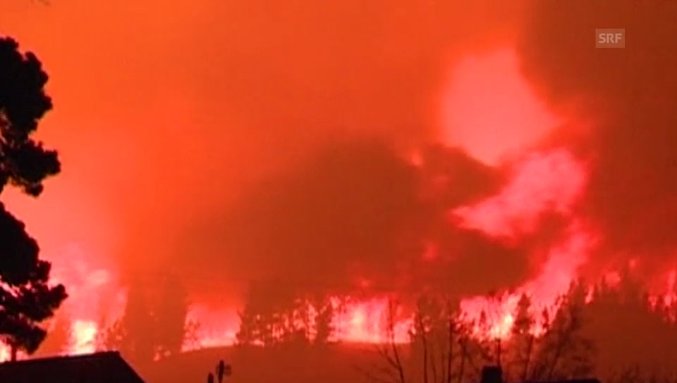 Waldbrand erreicht Munitionslager (unkomm.)