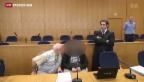 Video «Prozess gegen IS-Kämpfer in Frankfurt» abspielen
