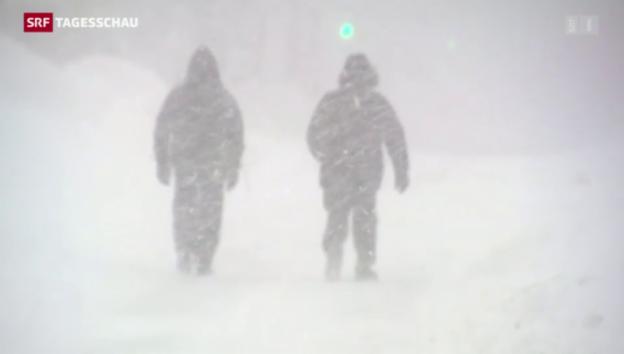 Video «Kältewelle in den USA» abspielen