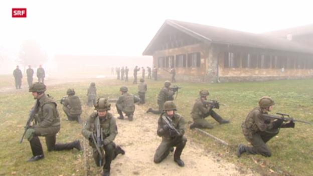 Video «Österreich stimmt über Wehrpflicht ab» abspielen