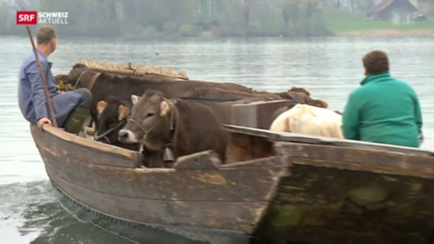 Video «Schweiz aktuell vom 26.04.2013» abspielen
