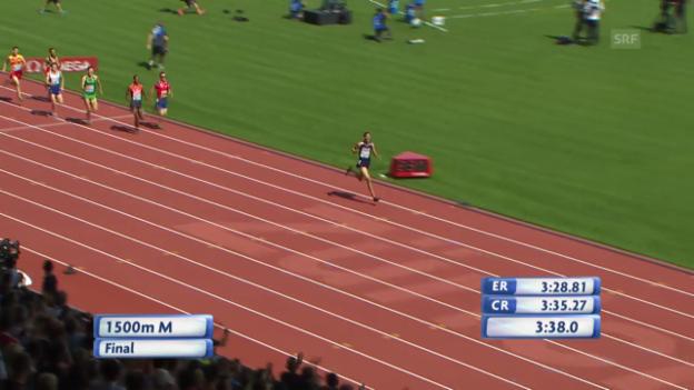 Video «Leichtathletik-EM: 1500 m der Männer» abspielen