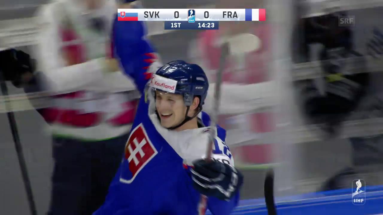 Die Tore bei Slowakei - Frankreich