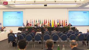 Video «OSZE-Staaten hoffen auf Russlands Hilfe » abspielen