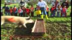Video «Beni kommentiert ein Säuli-Rennen.» abspielen