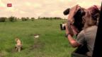 Video «Der Geparden-Mann» abspielen
