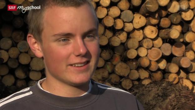 Video «Berufsbild: Säger Holzindustrie EFZ» abspielen