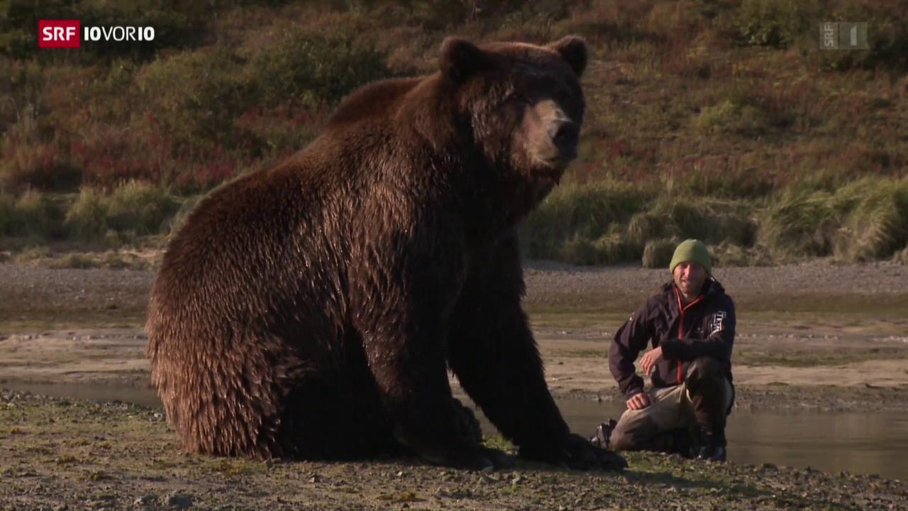 Der Bärenflüsterer