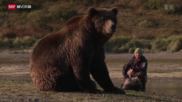 Video «Der Bärenflüsterer» abspielen