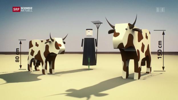 Video «Landwirtschaft gestern und heute» abspielen