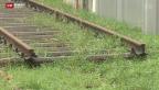 Video «Nur eine halbe S-Bahn» abspielen