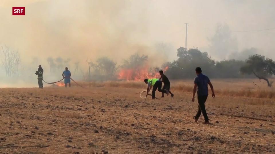 Brände wüten in der Türkei
