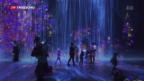 Video «Grenzenlose Kunst» abspielen