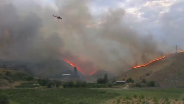 Video «Schwere Waldbrände bei Seattle» abspielen