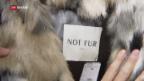 Video «FOKUS: Modebranche verzichtet zunehmend auf Echtpelz» abspielen