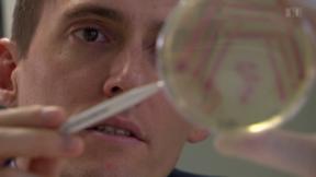 Video «Neue Antibiotika: Wenig Anreize für Big Pharma» abspielen