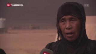 Video «Ungewisse Zukunft Mossuls» abspielen