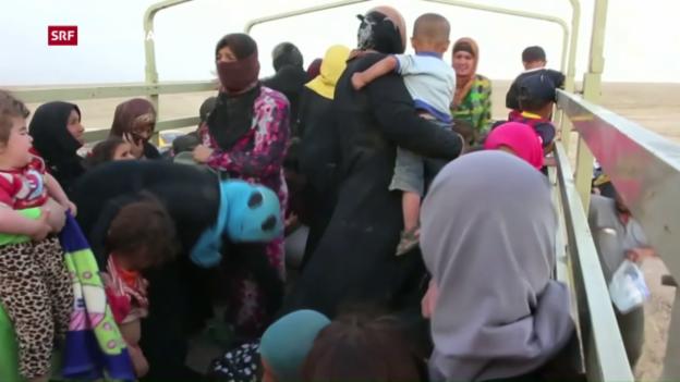 Video «Trauriger Rekord: 65 Millionen Menschen auf der Flucht» abspielen