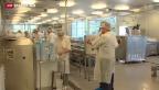 Video «Deutsche Familienbetriebe stehen Kopf» abspielen