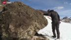Video «Steinschlag Ardez» abspielen
