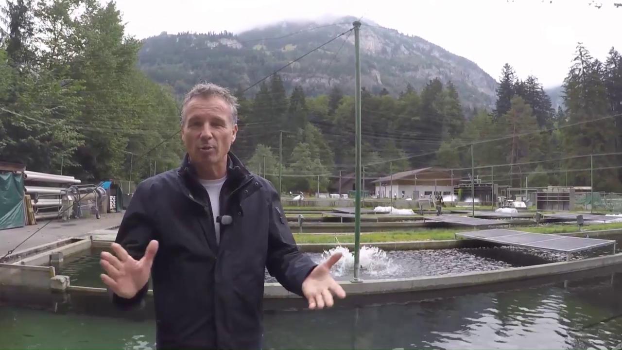 Kassensturz Bio Fisch zucht Making-Of Blausee