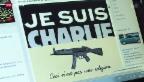 Video «Gewalt gegen Journalisten» abspielen