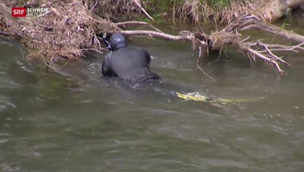 Video «Toter im Bodensee identifiziert» abspielen