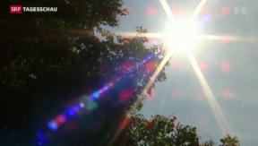 Video «Die Gefahren der Hitze» abspielen
