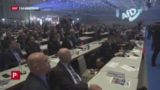 Video «AfD wählt neue Führung – Proteste auf der Strasse» abspielen