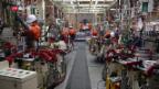 Video «China: Das Land der Robotik» abspielen