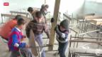 Video «Bewegung in Syrien» abspielen