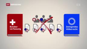 Video «Bundesrat zu Selbstbestimmungsinitiative» abspielen